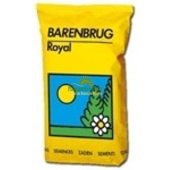 Barenbrug Royal